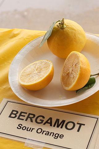 Bergamot citrus